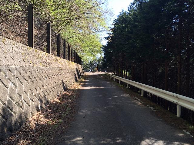 一車線の舗装路