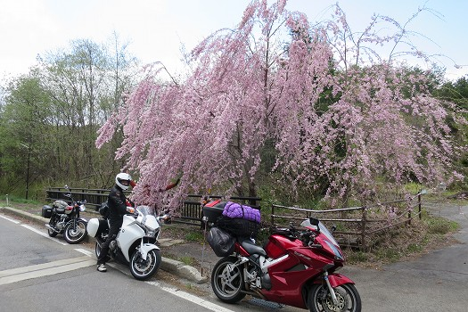 バイク用インカム ノイズリダクションとマイクの指向性を比較