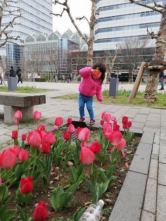 花を見てポーズをとる娘